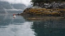 Kayaking around Puffin Island, Glacier Bay Alaska photographed by Jeff Wendorff