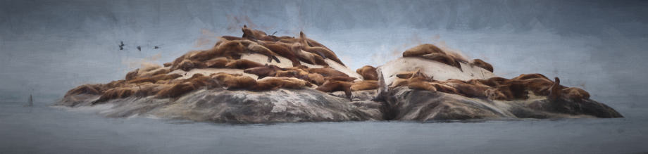 A painting of Glacier Bay Sea Lions created with Topaz Impression by Jeff Wendorff