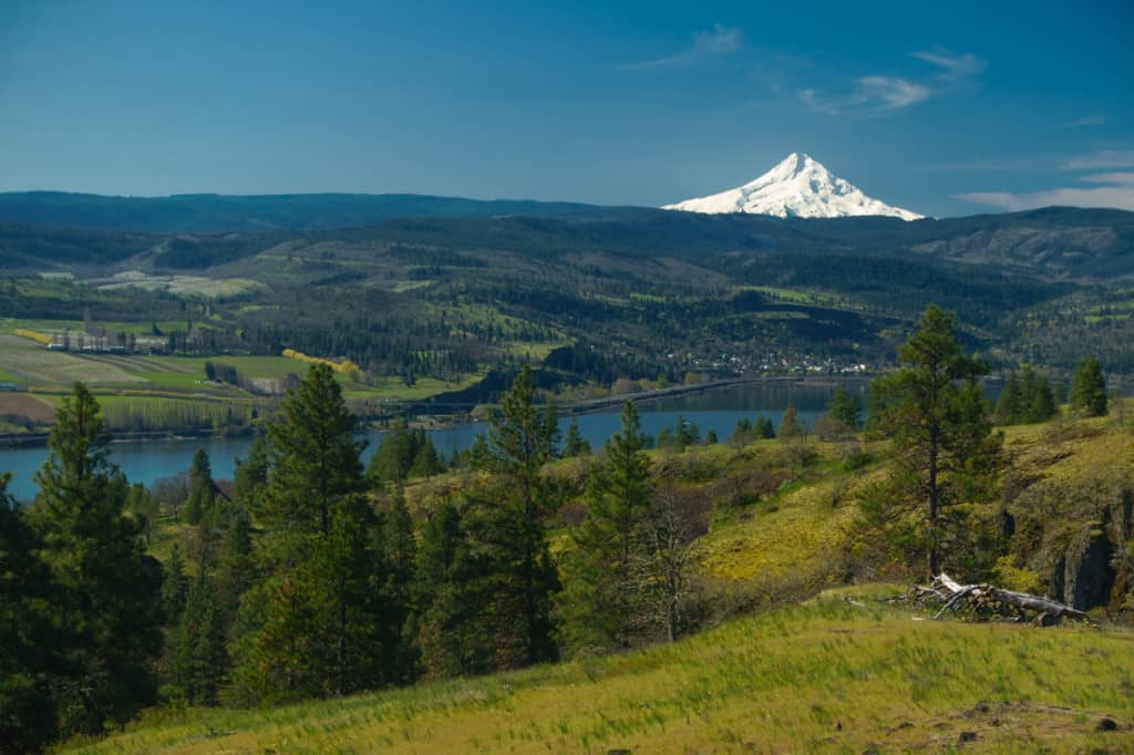 The Columbia Gorge and Mt. Hood from Catherine's Creek photographed by Jeff Wendorff
