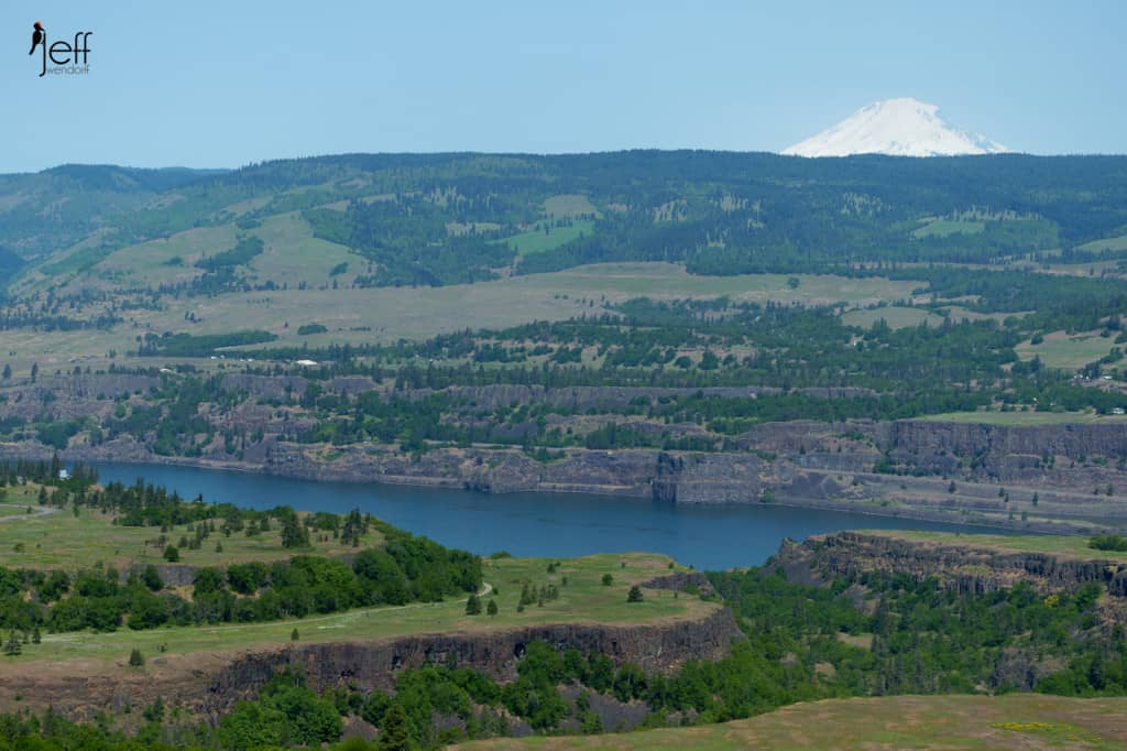 Mt. Adams and the Columbia Gorge photographed by Jeff Wendorff from McCall Point