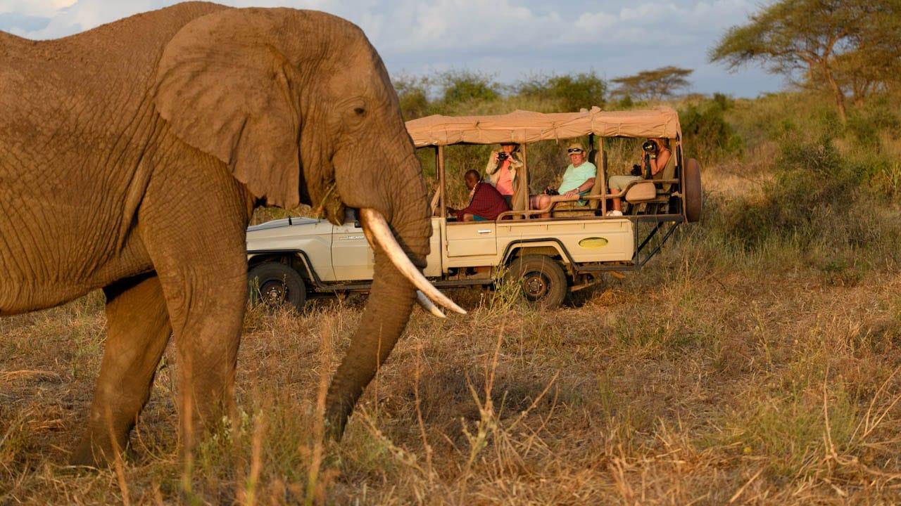 Clients encounter elephant upclose Kenya Photo Safari